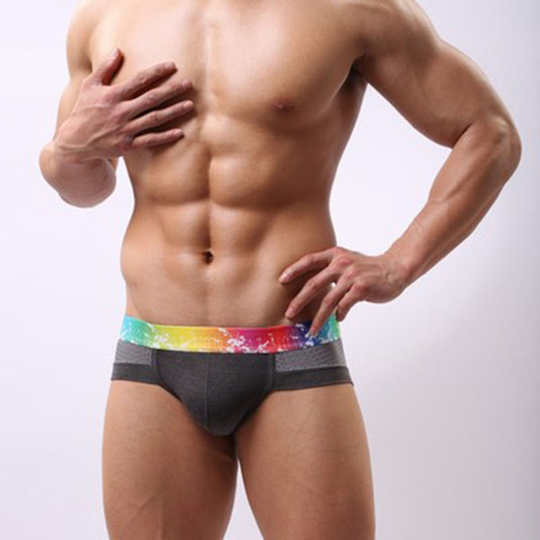 Men's Low Waist Triangle Modal Mesh Breathable Underwear