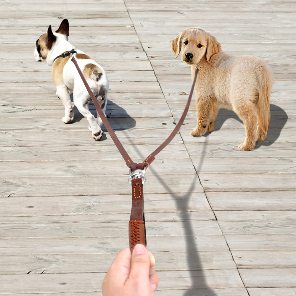 Leather Double Dog Leash - Tinklegem.com