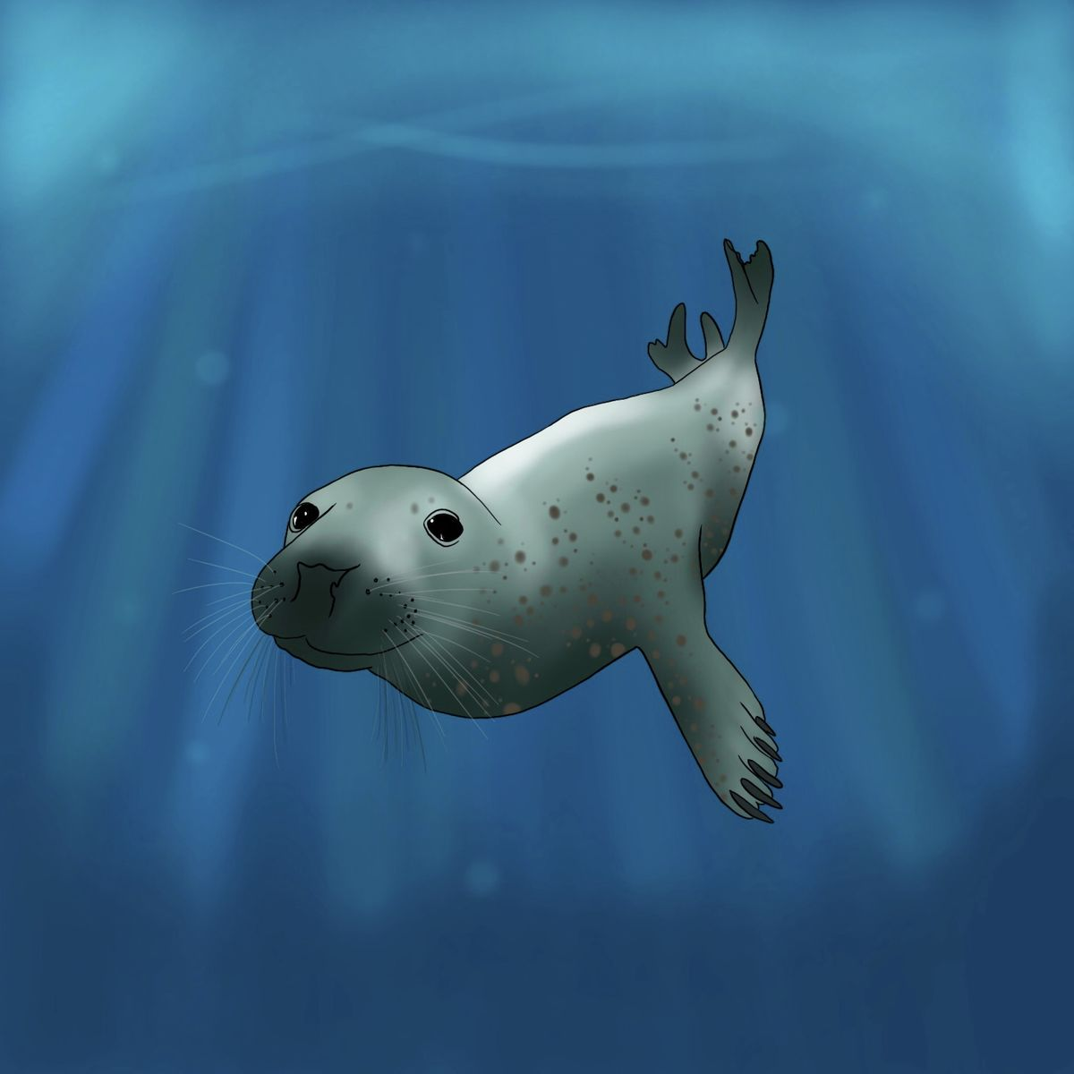 Under The Sea Seal