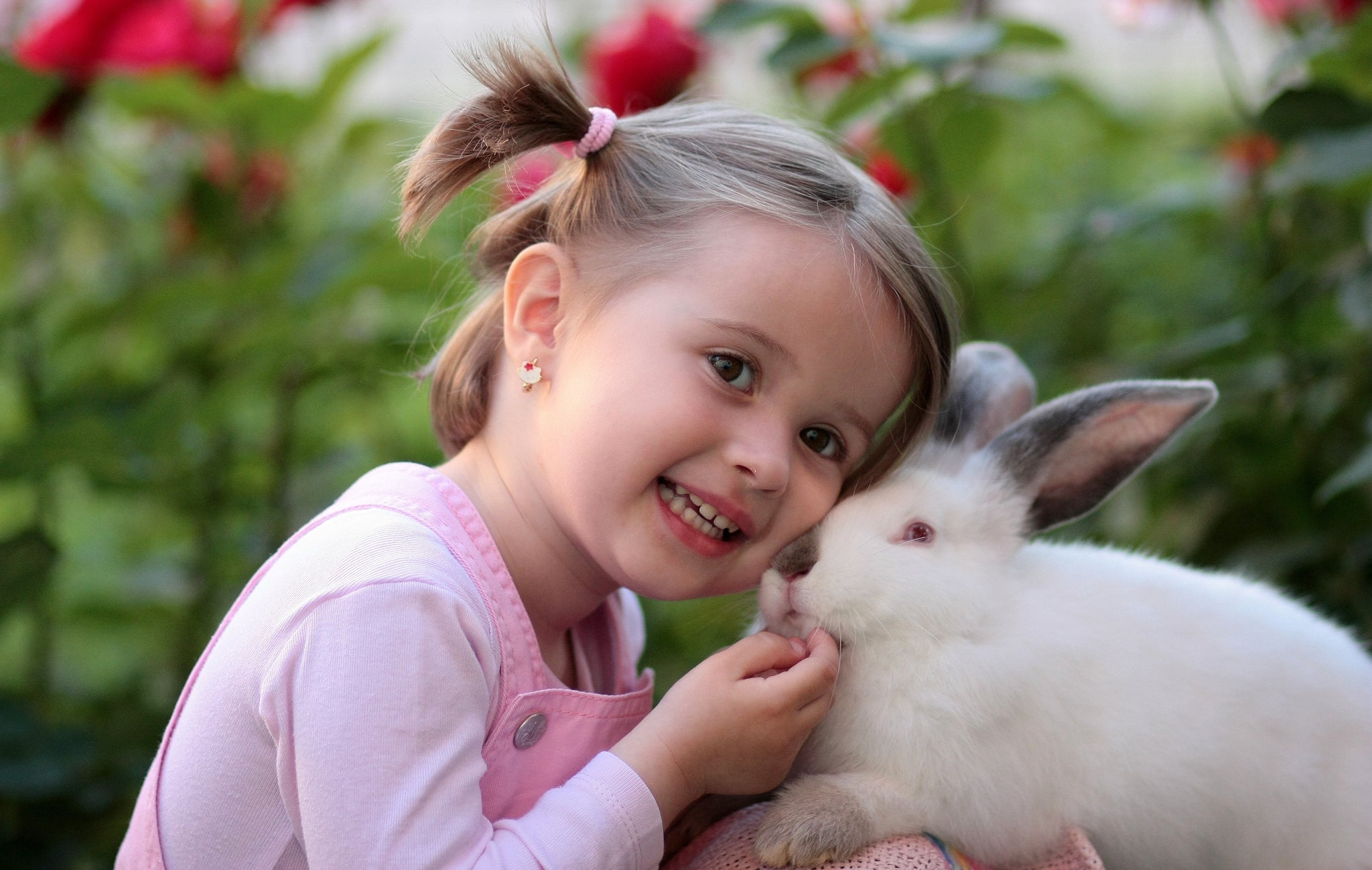 Little girl holding a white bunny rabbit, for AutoBrush