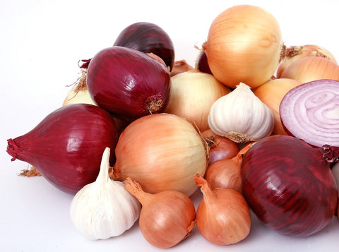 Cloves of garlic and bulbs of onion, for Autobrush