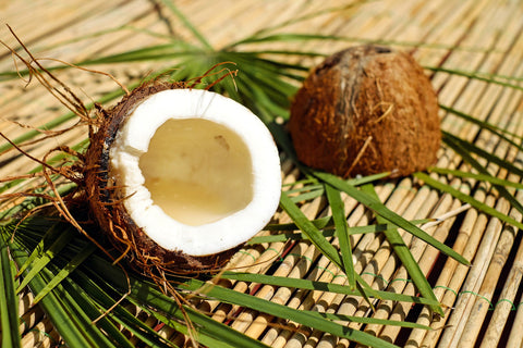 Two halves of a coconut and coconut leaves, for AutoBrush