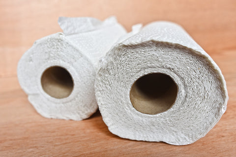 Two rolls of paper towel, for AutoBrush
