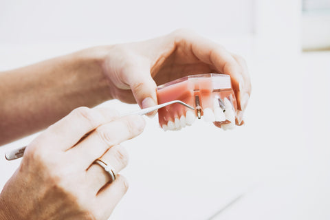A person holding a denture sample and pointing at it using dentist's tool, for AutoBrush