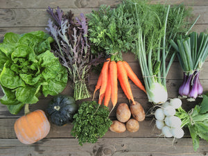 2021 Fall Share CSA basket - Pick Up