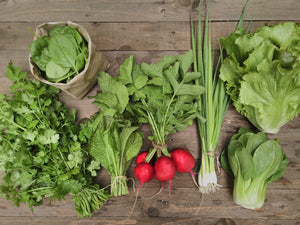 2021 Spring Share CSA Basket - Home Delivery