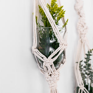 Ironwood Plant Hanger