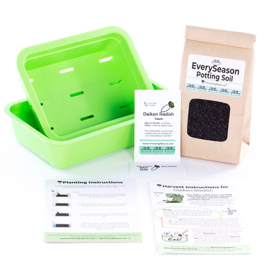 Microgreens Grow Kit 🌱