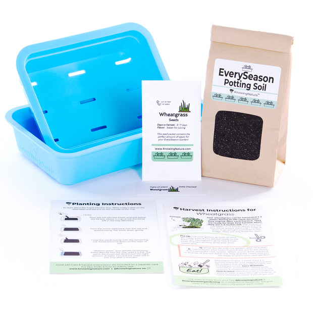 The EverySeason Garden Kit - Blue Planter. A Fun & easy indoor garden that makes a great gardening gift for beginners, families, foodies, teachers & plant lovers.
