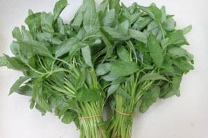 Organic Baby Spinach Sharp Leaf