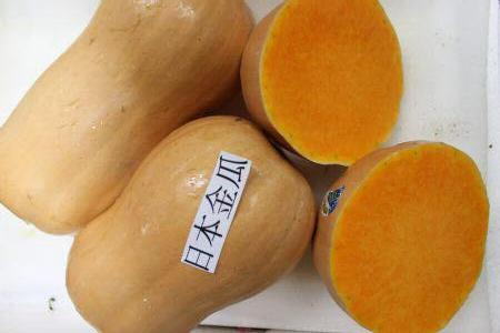 Organic Japanese Golden Pumpkin