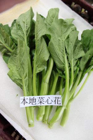 Organic Local Cai Xin Flower