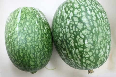 Organic Sharkfin Melon