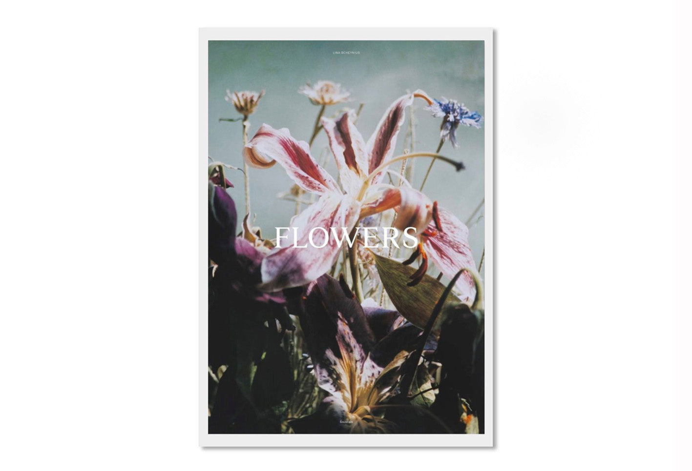 Flowers - signed