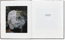 In Plain Air - signed copy