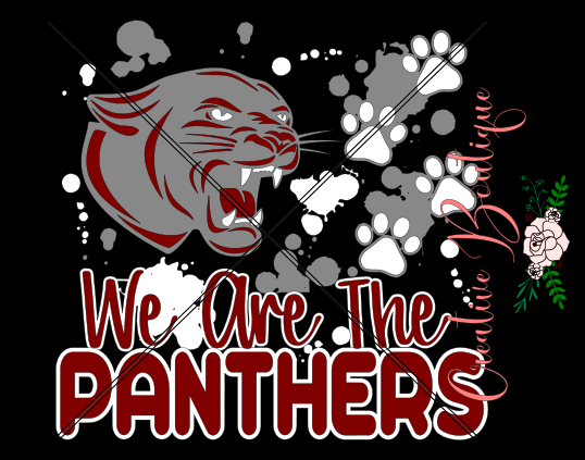 Sports - We are the Panthers