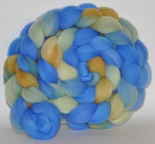 Targhee Hand Dyed Roving - 5.35 ounce - The Eleventh Hour Combed Top  - ooak