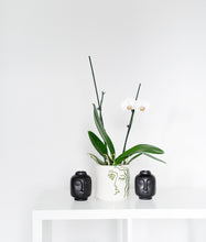"Load image into Gallery viewer, ""The Pout"" Black Ceramic Mini Vase"