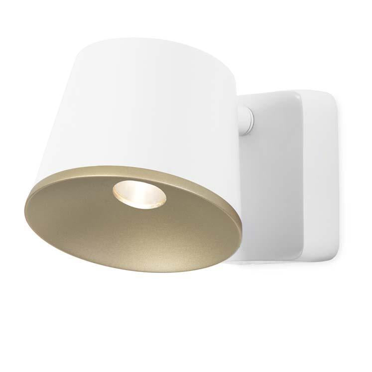 Halkin Modern LED Spotlight In White With Gold Facia - ID 8200