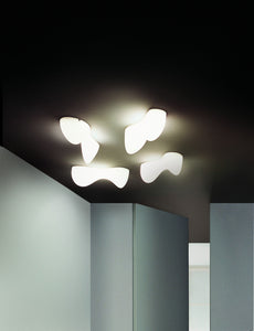 Foscarini Blob S Wall or Ceiling Light - London Lighting - 2
