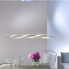 Entwined Steal Pendant Lamp In Stainless Steel Finish - ID 6208