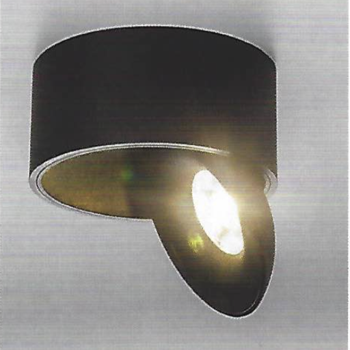 Directionable Flush Ceiling Light in Black - ID 7422