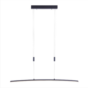 Modern Curved Adjustable Pendant Lamp In Anthracite Finish - ID 9599