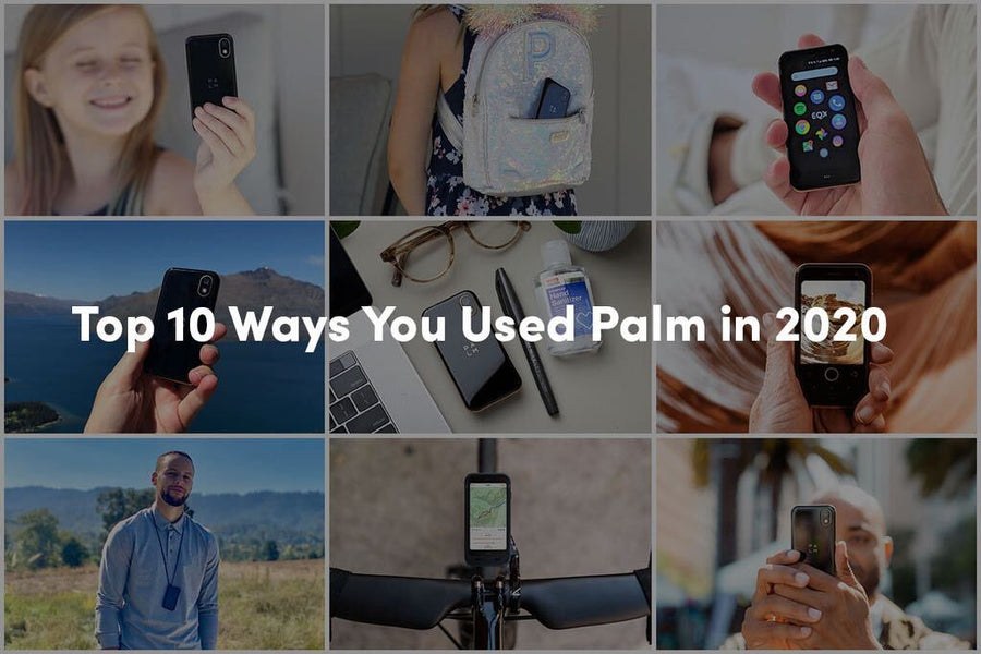Top 10 Ways You Used Palm in 2020