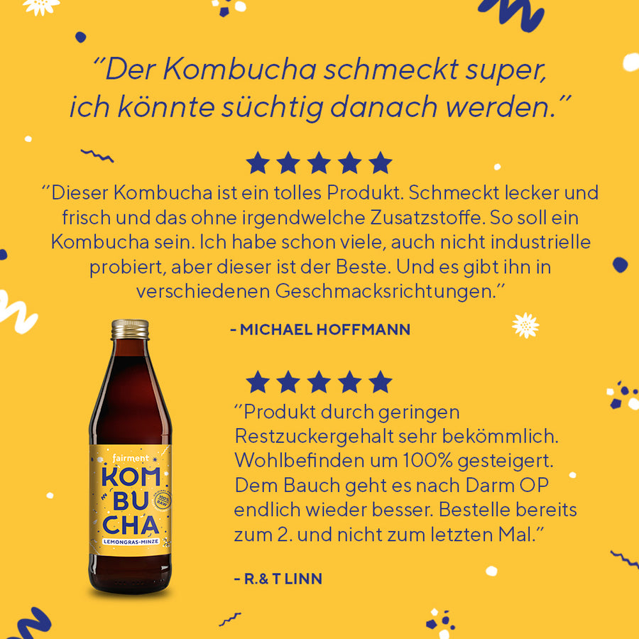 Bio Kombucha Lemongras-Minze fairment (330 ml Flaschen)