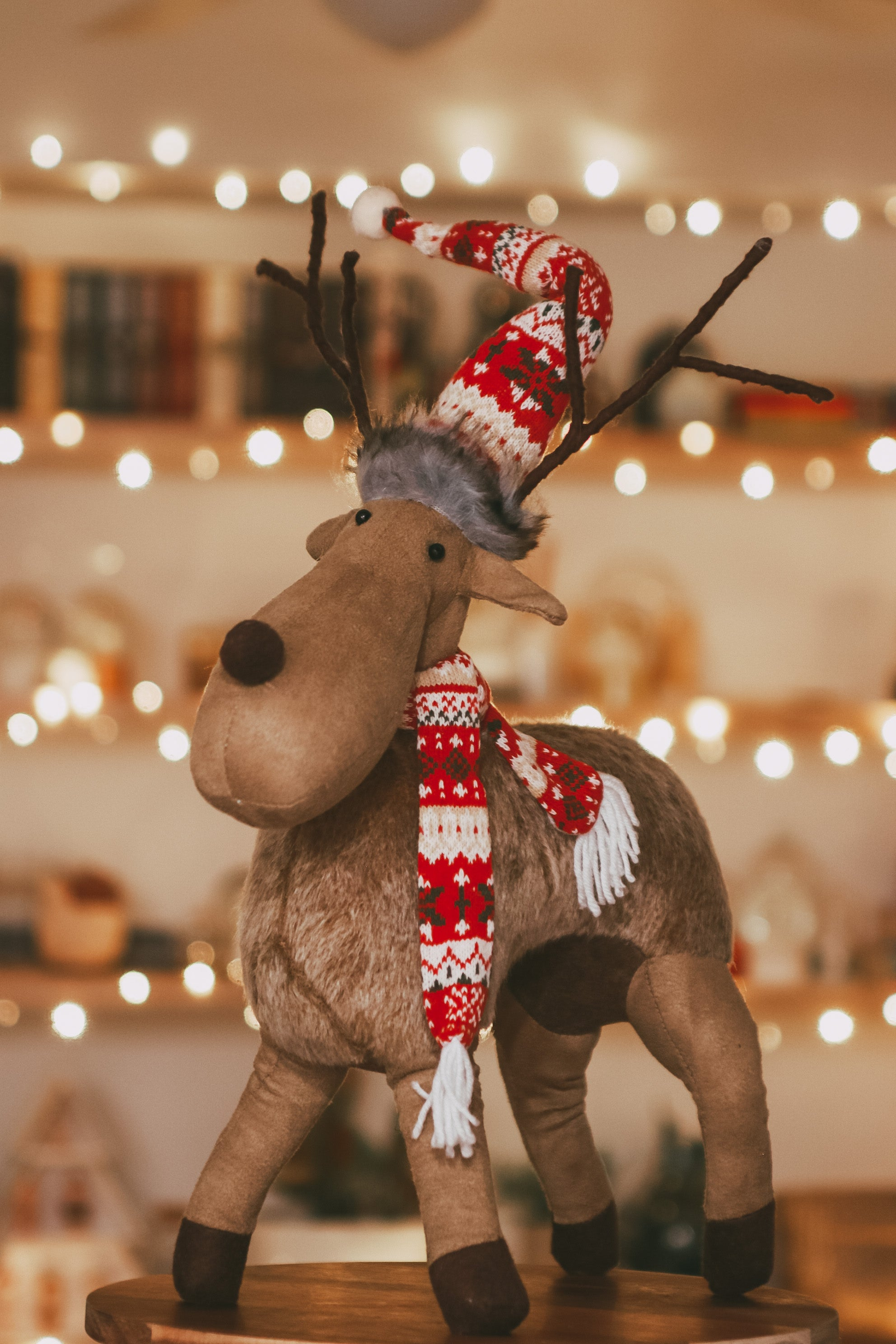 Standing Moose w/ Scarf