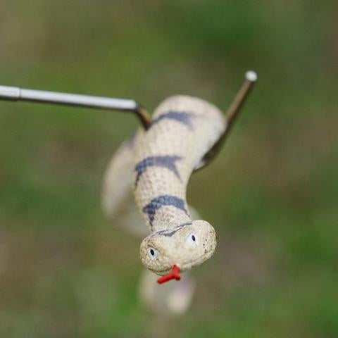 Toy Snake hook and Snake
