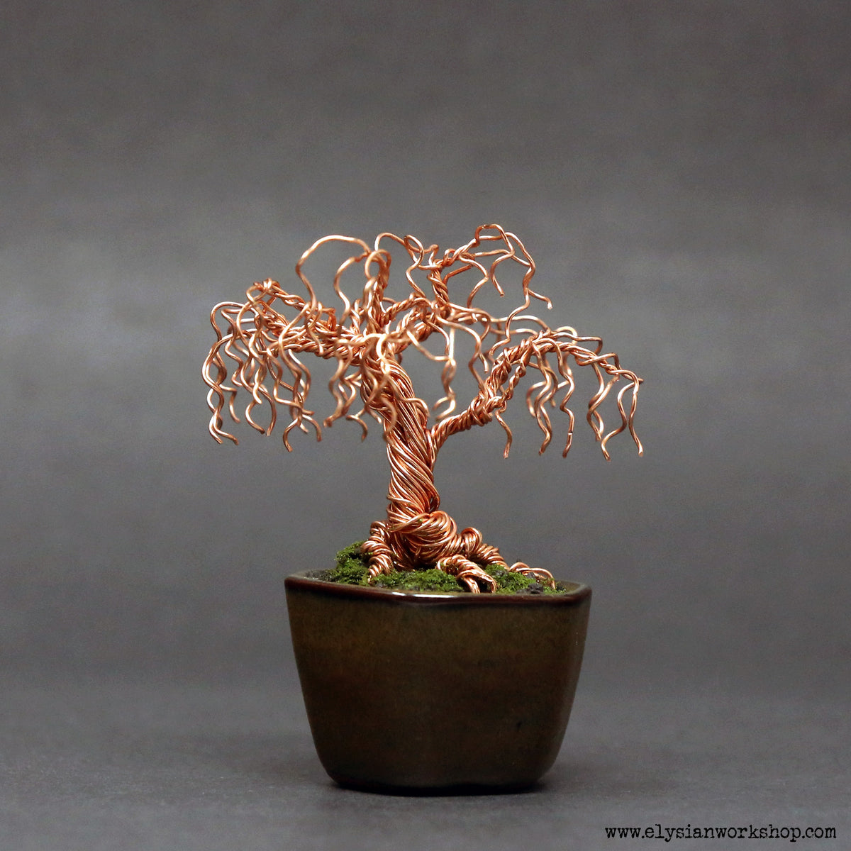 Polished Copper Willow Bonsai Tree Elysian Workshop