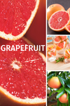 Grapefruit Infopicture