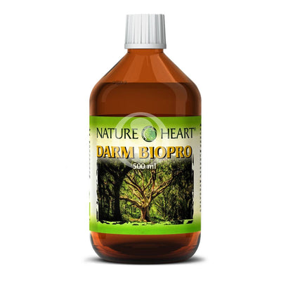 Produktbild Nature Heart DARM BIOPRO  500ml