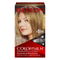 Revlon ColorSilk Beautiful Color™ Hair Color - 60 Dark Ash Blonde