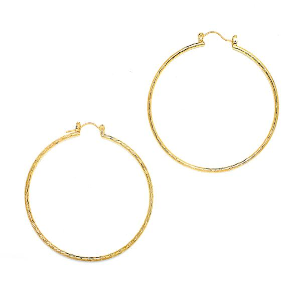 14 KT Pincatch GF Earrings, 60 mm