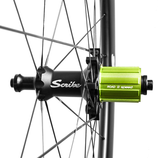 Scribe Pace Rear Wheel Close-up