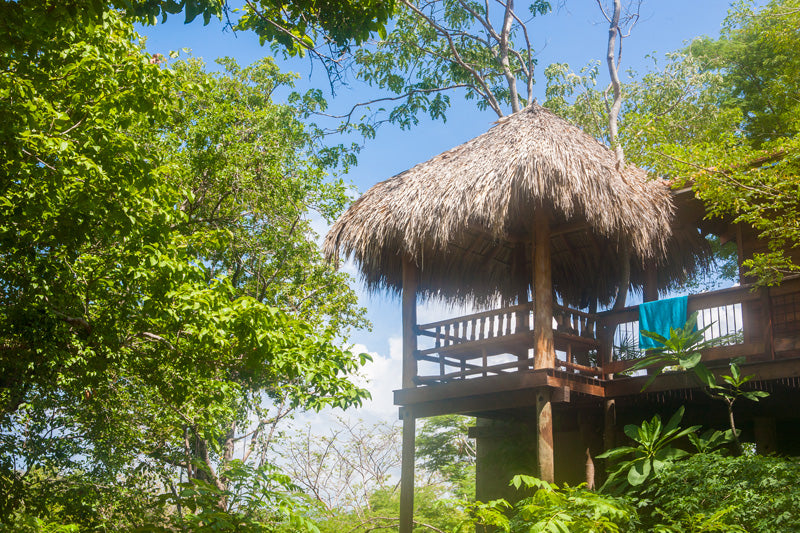 Aqua Wellness Resort Treehouse