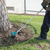 Makita XRU09PT 18V X2 (36V) LXT® Lithium‑Ion Brushless String Trimmer, (Reconditioned) - ToolSteal.com