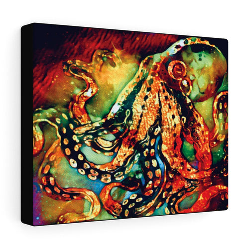 Octo Canvas