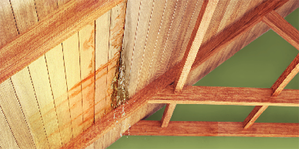Leaky Roofs (Flat Concrete or Sloped Wood Roofs)