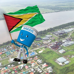 scenic image of Guyana village with Harris Paints little blue man with Guyana flag