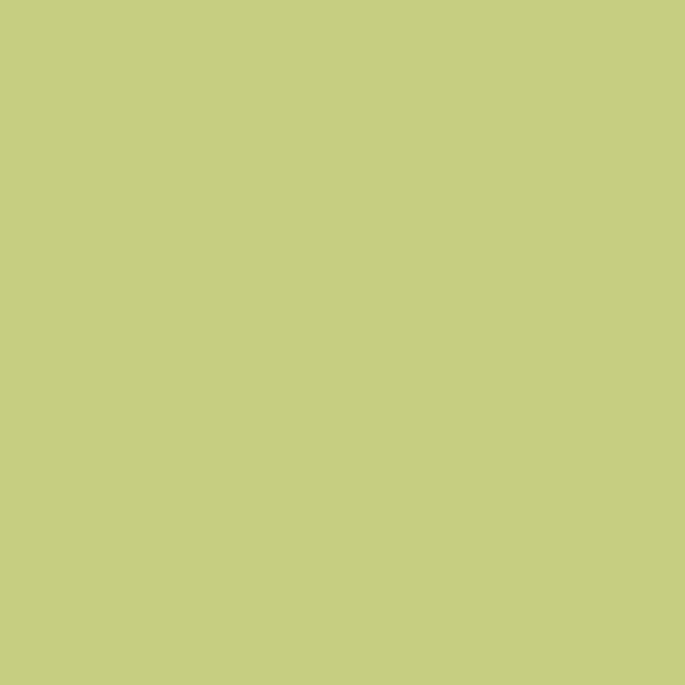 0779 Frog Green is a paint colour from the Ulttima Plus Fan Deck. Available at Harris Paints and BH Paints in the Caribbean.