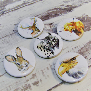 Scottish Wildlife, Set of 5 Pin Badges