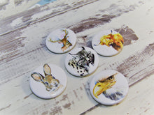 Load image into Gallery viewer, Scottish Wildlife, Set of 5 Pin Badges