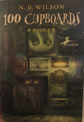 100 Cupboards (Book 1)
