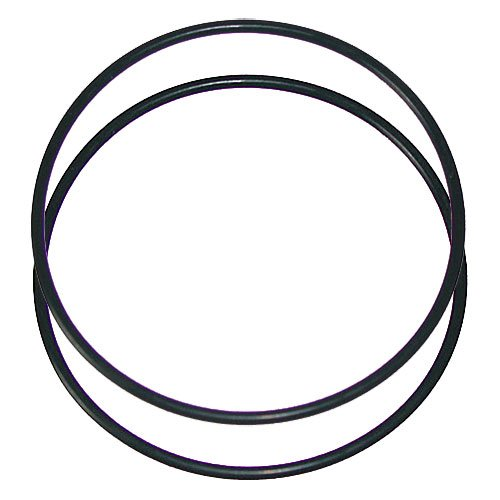 "O-Rings 10"" x 2.5 - 2 PACK - Aqua Max Water Filters"