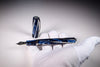 Visconti Homo Sapiens - Divina Elegance Fountain Pen | Pen Venture - Passion for Luxury