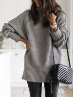 Turtleneck Long Sleeve Above Knee Plain Casual Dress