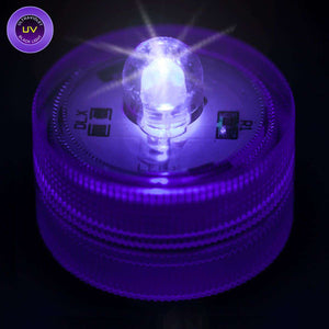 UV One LED Submersible Top View